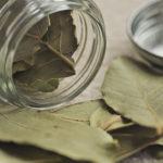 Польза лаврового листа. Лавровый лист, оберег, магия