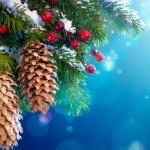 Новогодние приметы и ритуалы